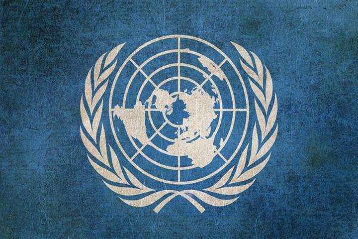 什么是联合国采购