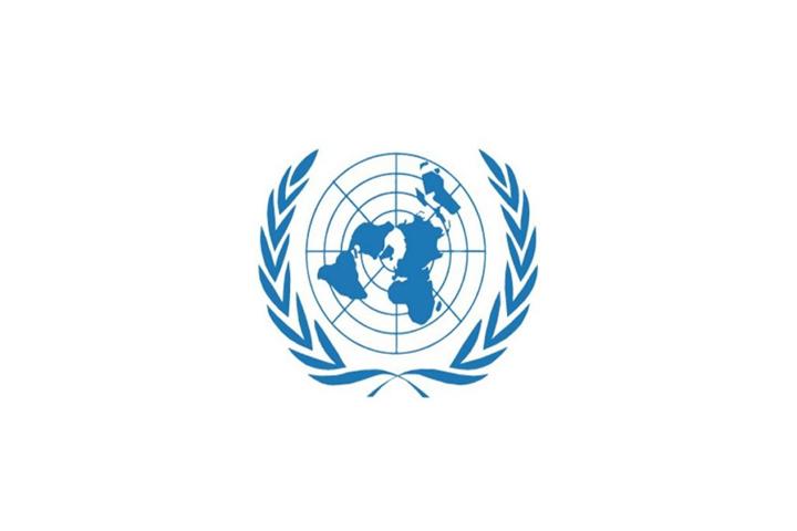 如何进入联合国市场